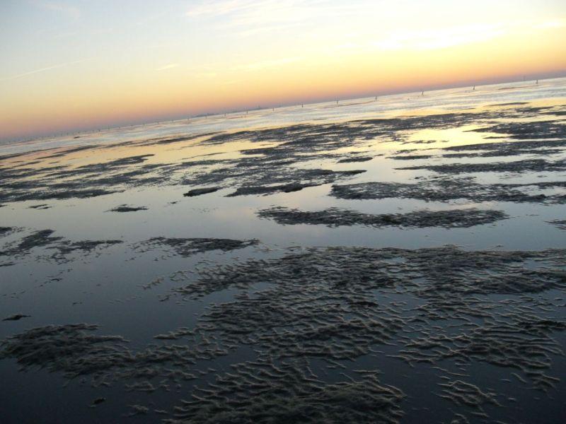 Abends beim Sonnenuntergang...