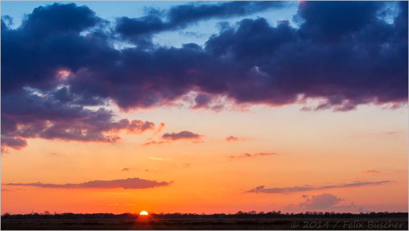 Abends im Moor (2)