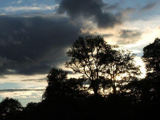 Abends im Park