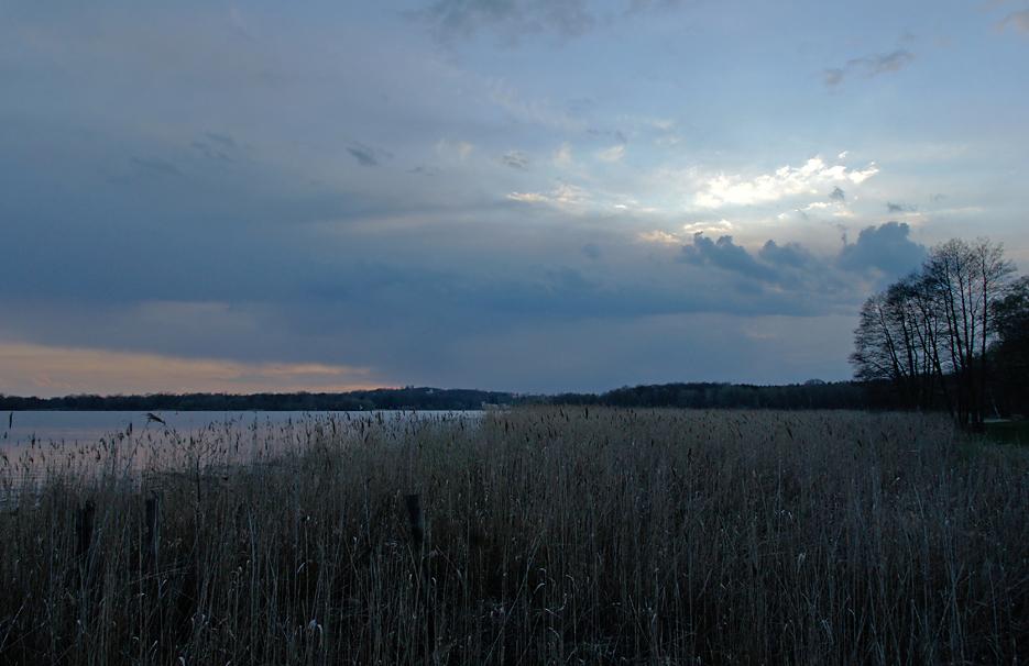 Abends im Sacrower Park, 10.04.10 – 05