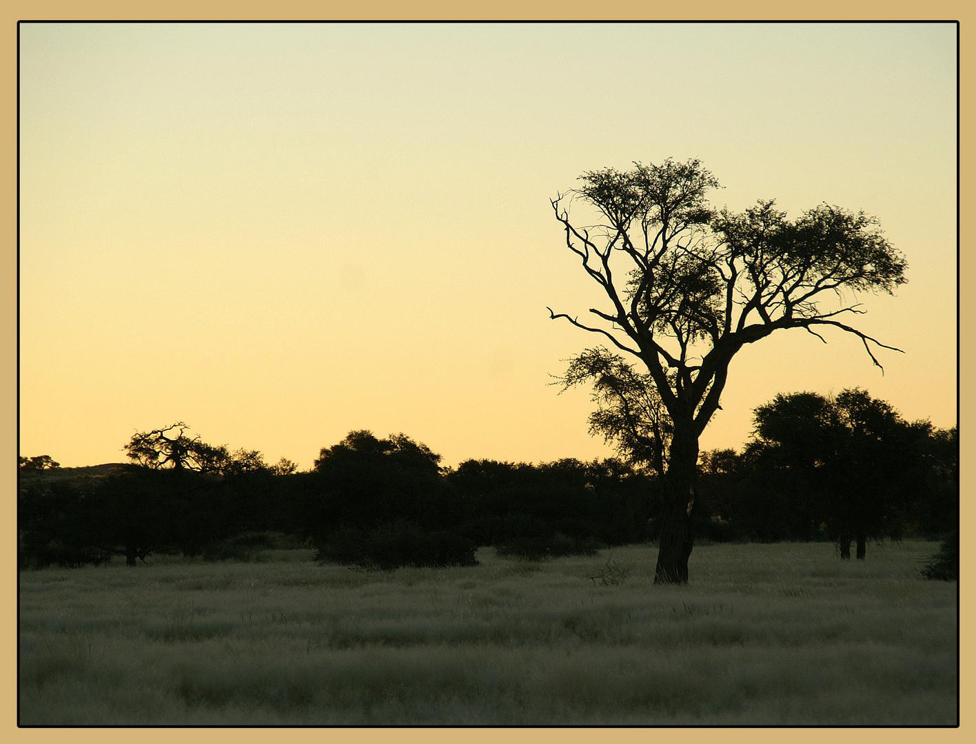 Abends im Süden von Namibia