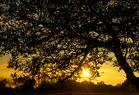 Abends in der Rhön