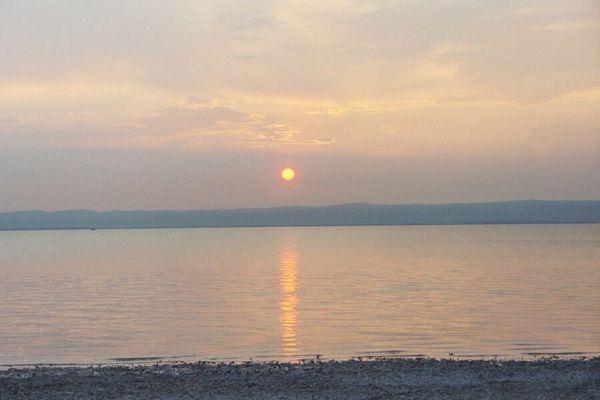 Abendsonne am Neusiedlersee