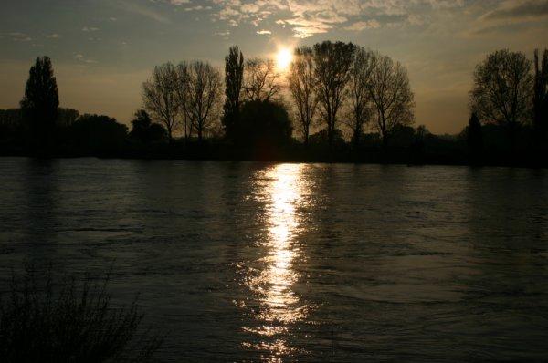 Abendsonne am Rhein