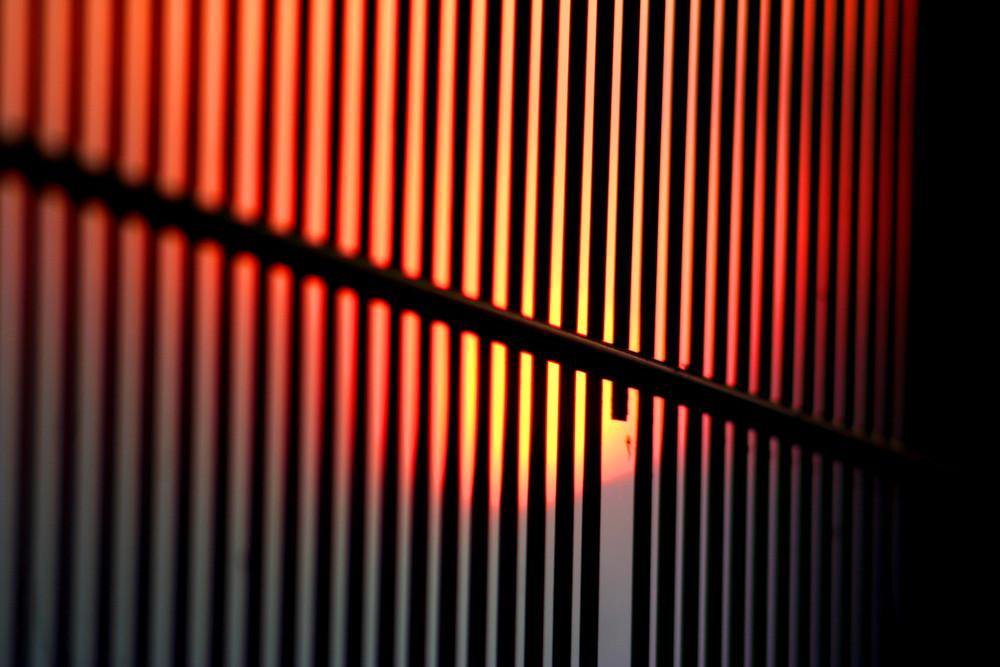 Abendsonne hinter Gittern