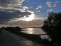 Abendsonne in Monheim am Rhein