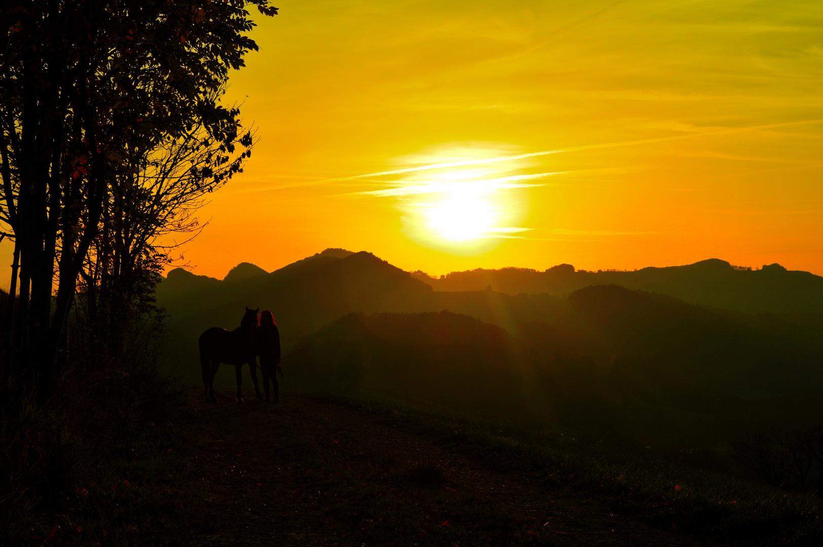 Abendsonne mit Reiterin