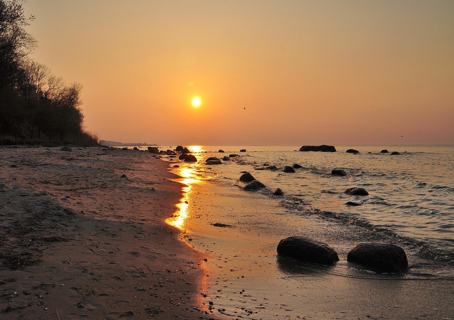 Abendsonne über einen steinigen Strand