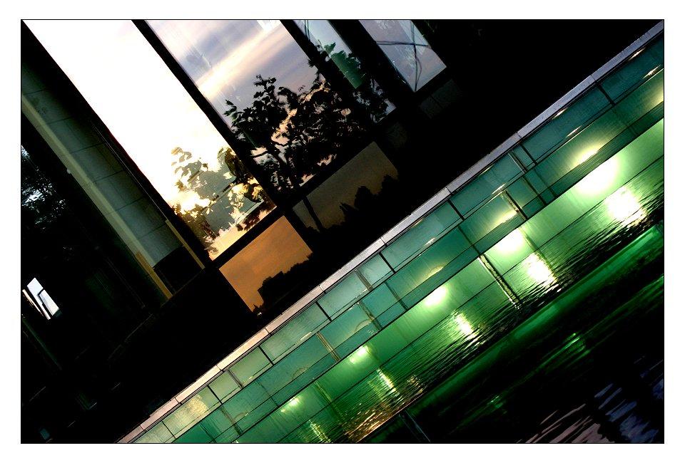 Abendsonne und grün...
