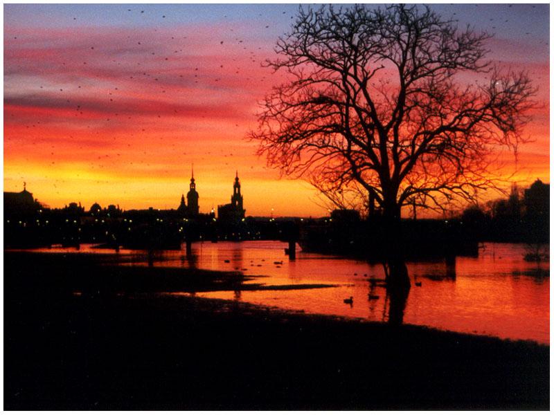 Abendstimmung am Elbufer bei Dresden