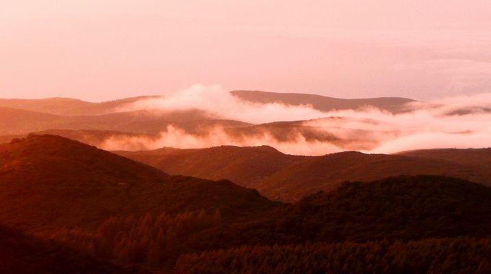 Abendstimmung am Garajonay - die Passatwolken kommen über die Berge