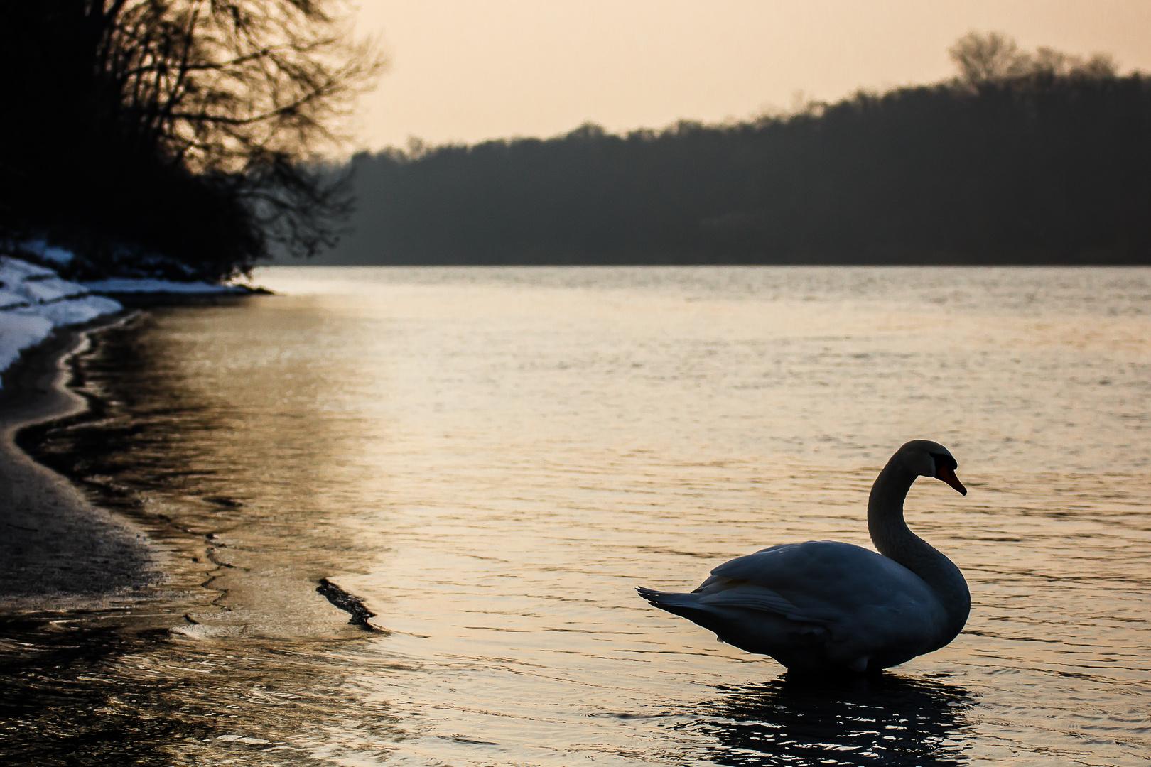 Abendstimmung am Inn Ufer