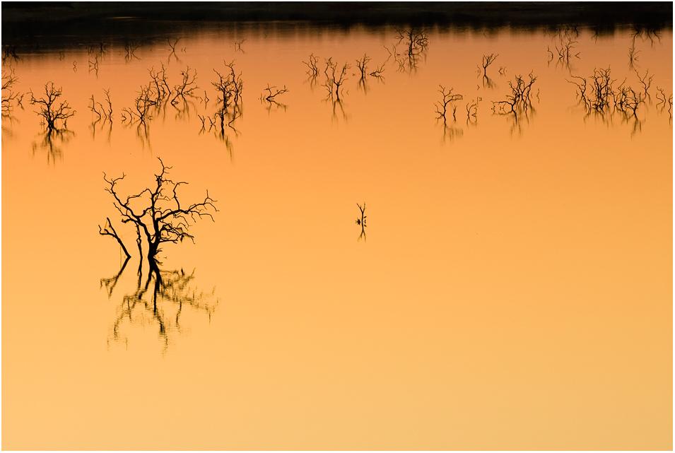Abendstimmung am Lake Massingir