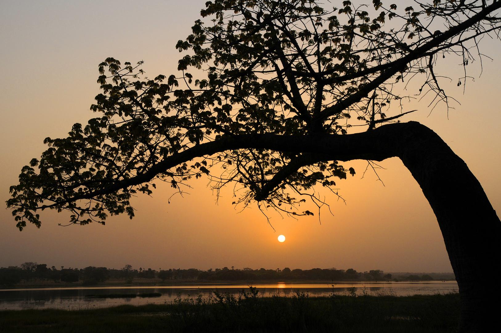 Abendstimmung am See von Tengrela / Burkina Faso