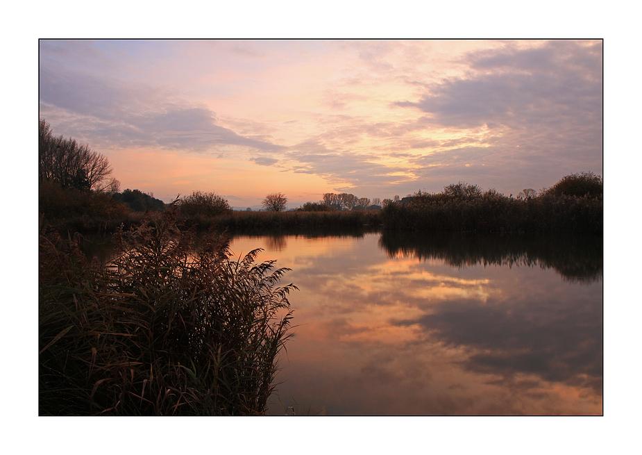 Abendstimmung am Teich 2