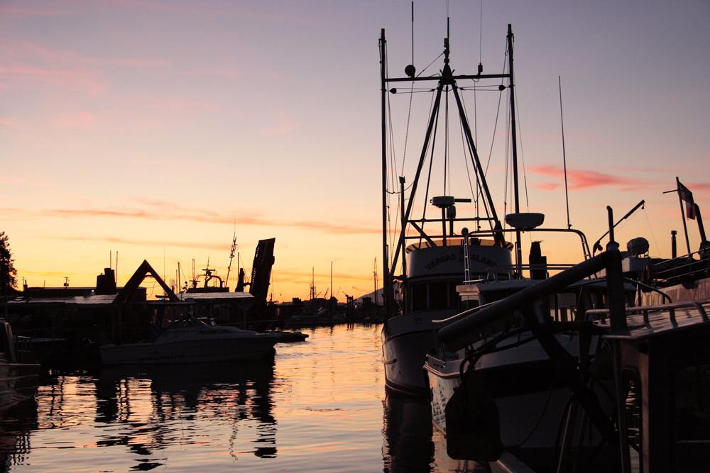 Abendstimmung im Hafen Tofinos