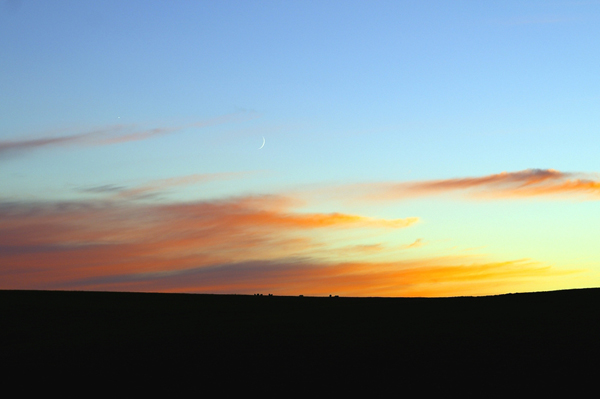 Abendstimmung im Moor