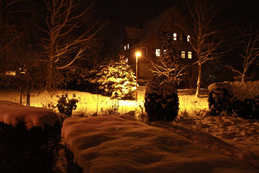 Abendstimmung im Schnee
