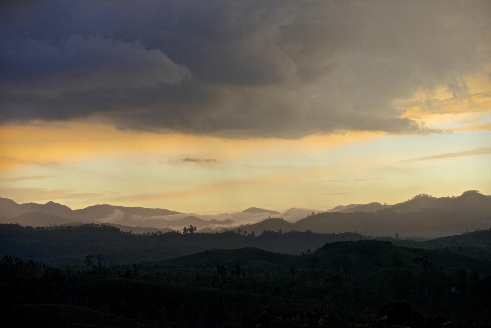 Abendstimmung in den Bergen nahe Nuwara Eliya