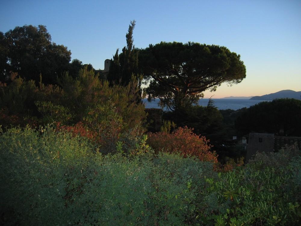 Abendstimmung in der Provence