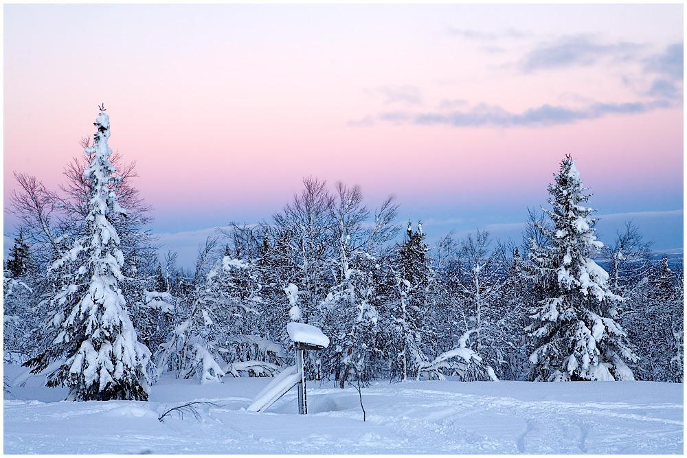 Abendstimmung in Lappland - Schweden