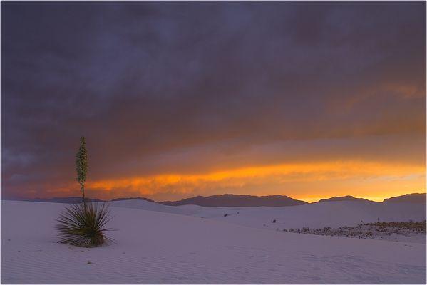 Abendstimmung in White Sands
