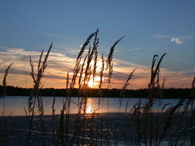 Abendstunde am See.....