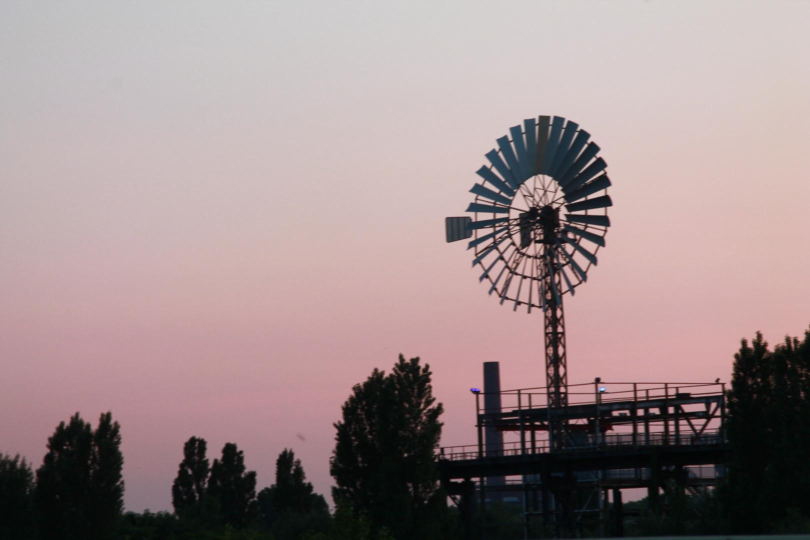 Abendstunden im Landschaftspark Duisburg
