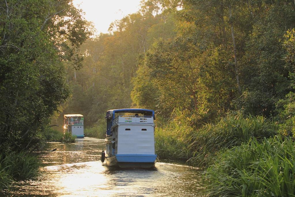 Abenteuerreise nach Borneo Indonesien