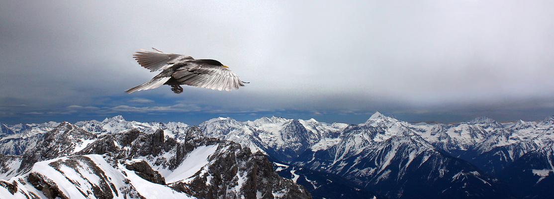 Abflug über die Alpen