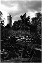 Abgebrannte Kleingartensiedlung