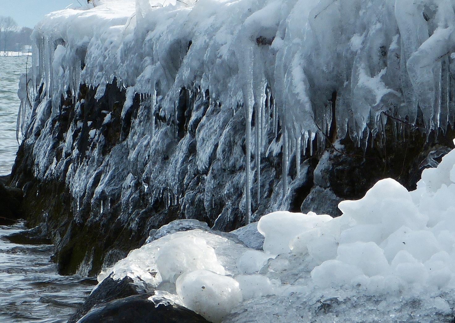 Abgehangene Eisschollenfilets
