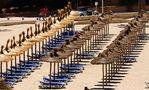 Abgekaute Fischgreten am Strand? von Thomas Mikonauschke
