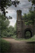 Abney Park VII