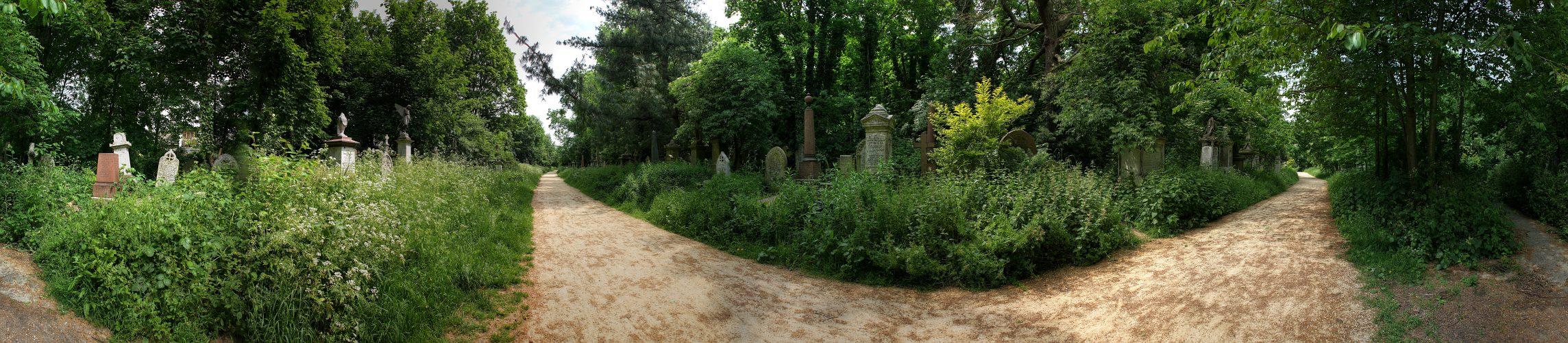 Abney Park VIII