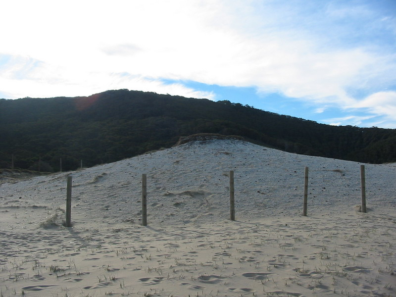 Aboriginal Midden
