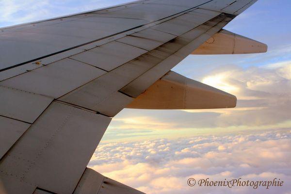 ~ Above ~