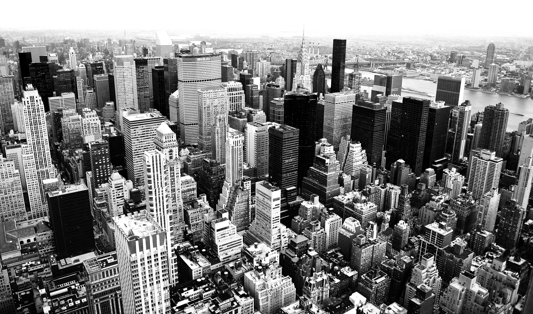 Above NYC | Black and White