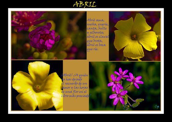 Abril, florido y hermoso....