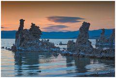 Abschied vom Mono Lake ....