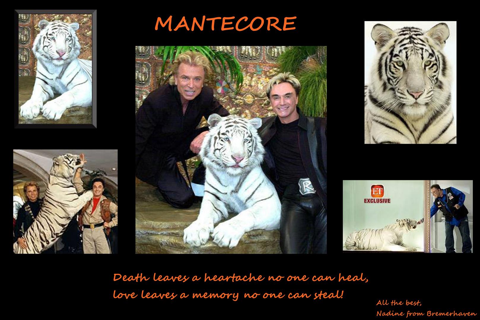 Abschied von Mantecore