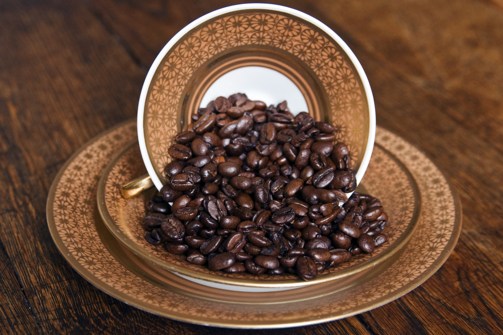 ABSOLUTE COFFEE BEANS