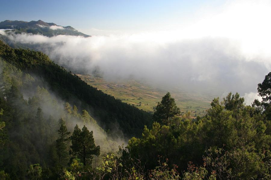 Abstieg Camino Real