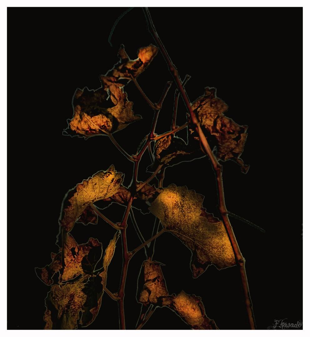 Abstrac sobre hojas de Parra ( A Goyo Alonso)