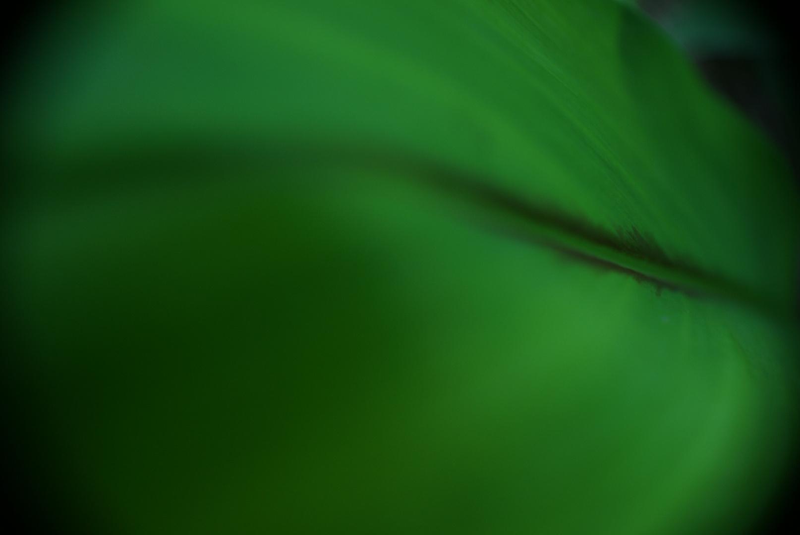 Abstracción Verdosa
