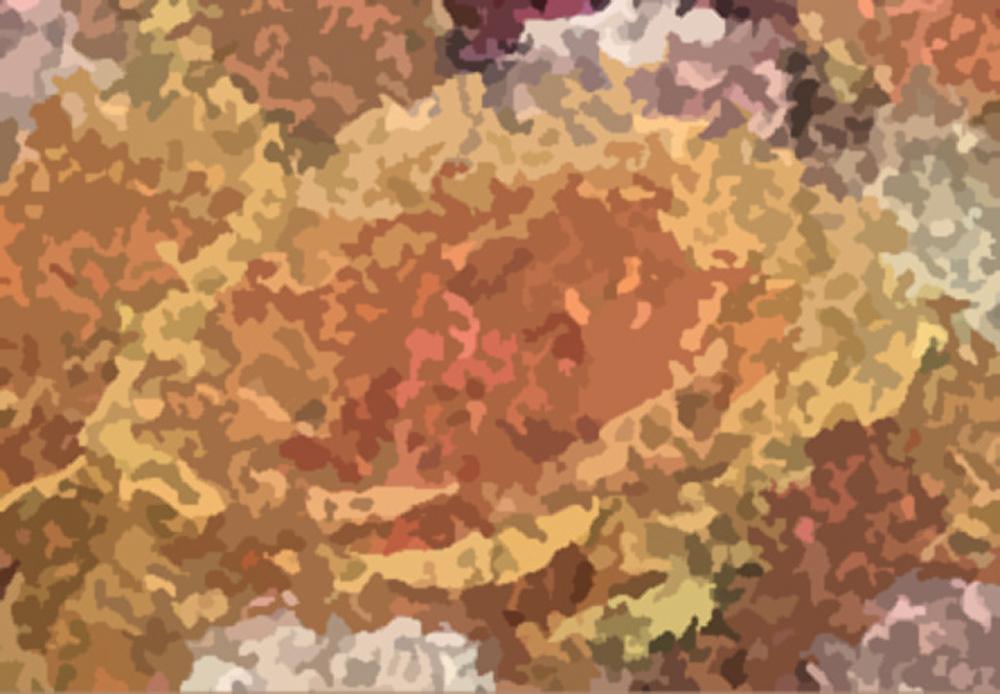 Abstrakteblume1