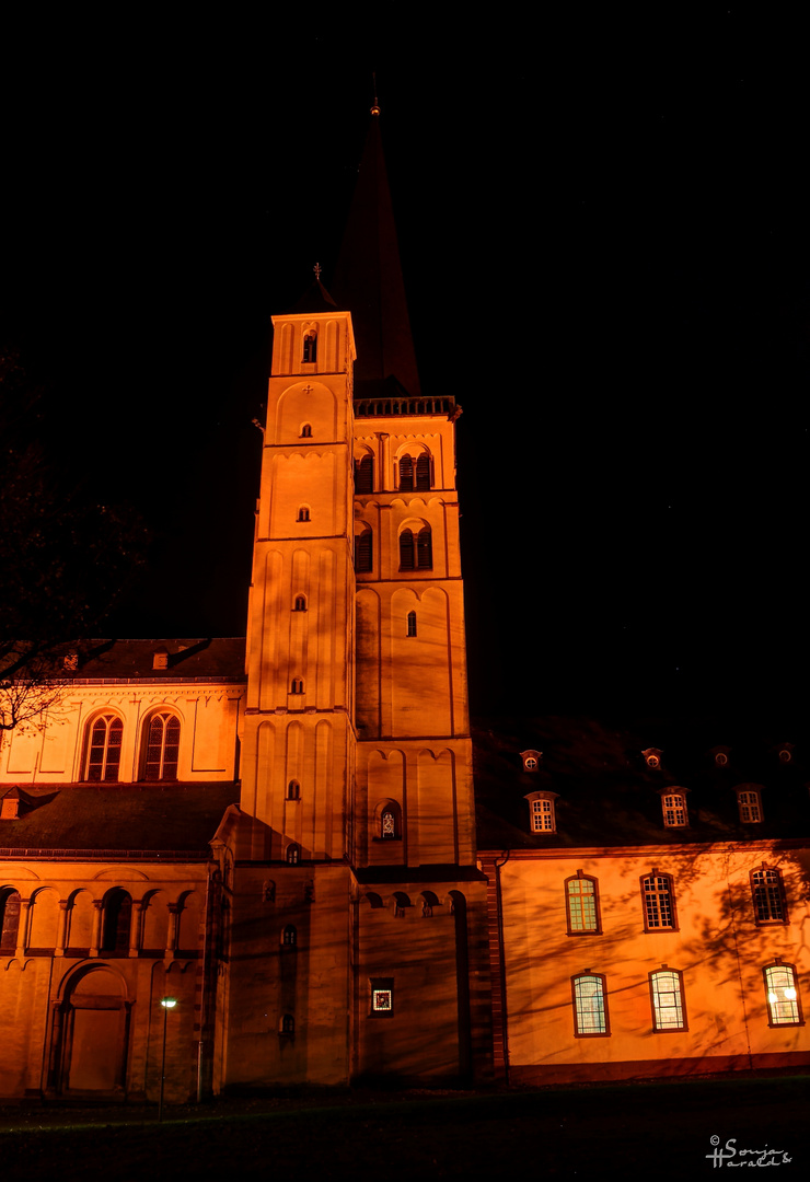 Abteikirche St. Nikolaus in Brauweiler (2)