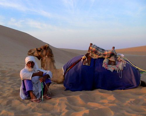 Abu Dhabi desert 2007_2