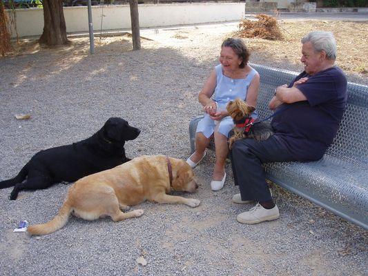 abuelos y perros