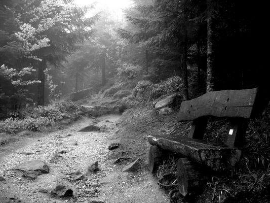Accès au Donon, Vosges